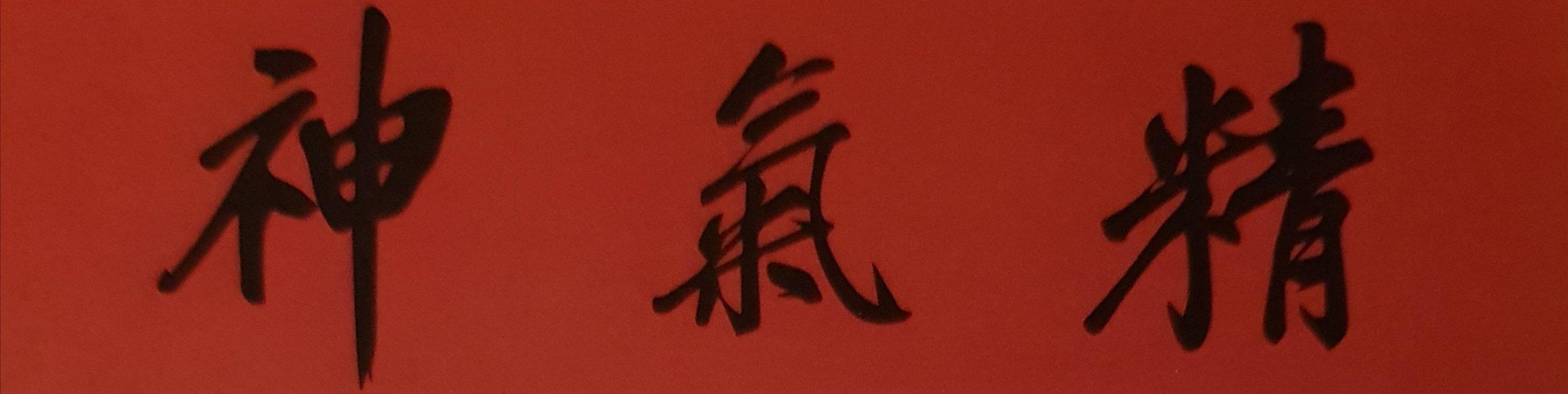 Praxis für Akupunktur und Chinesische Medizin